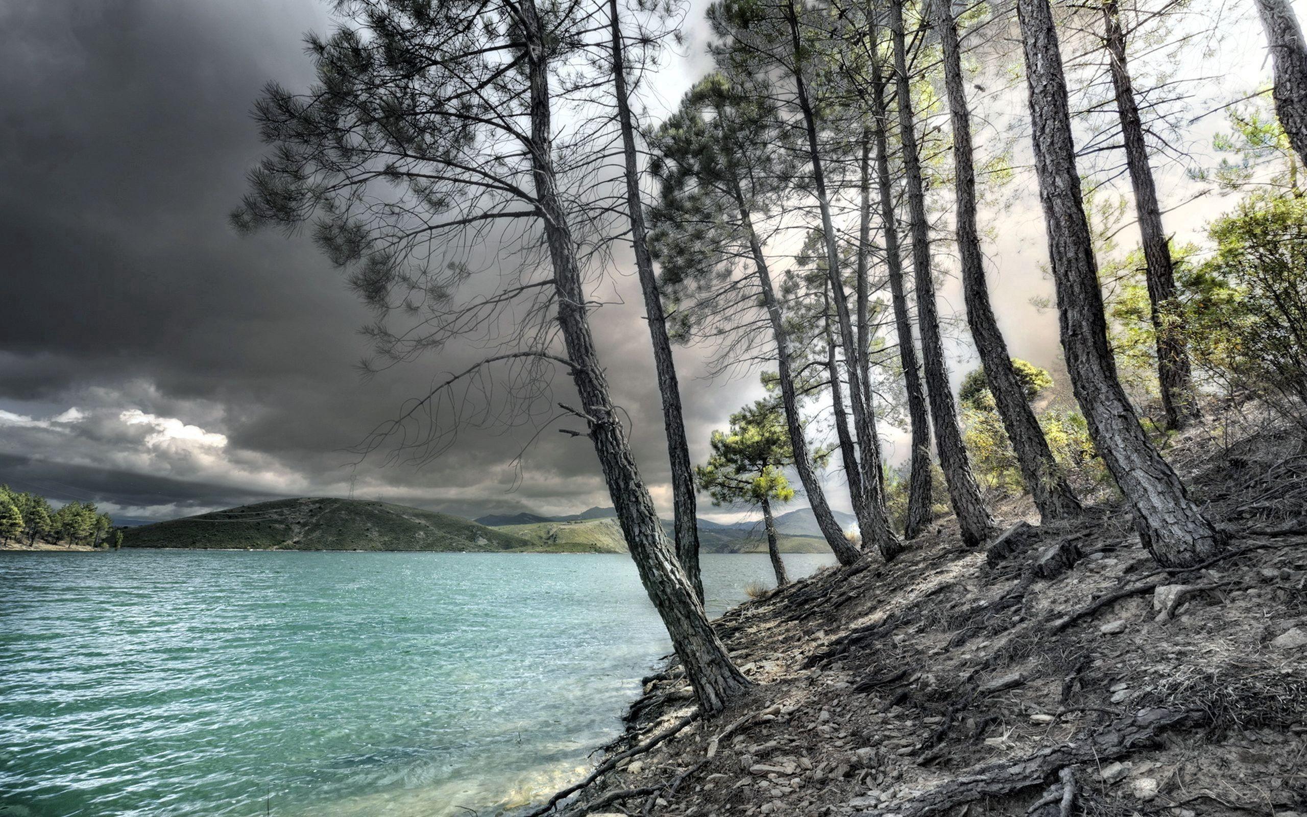 97319 descargar fondo de pantalla Naturaleza, Ríos, Árboles, Orilla, Banco: protectores de pantalla e imágenes gratis