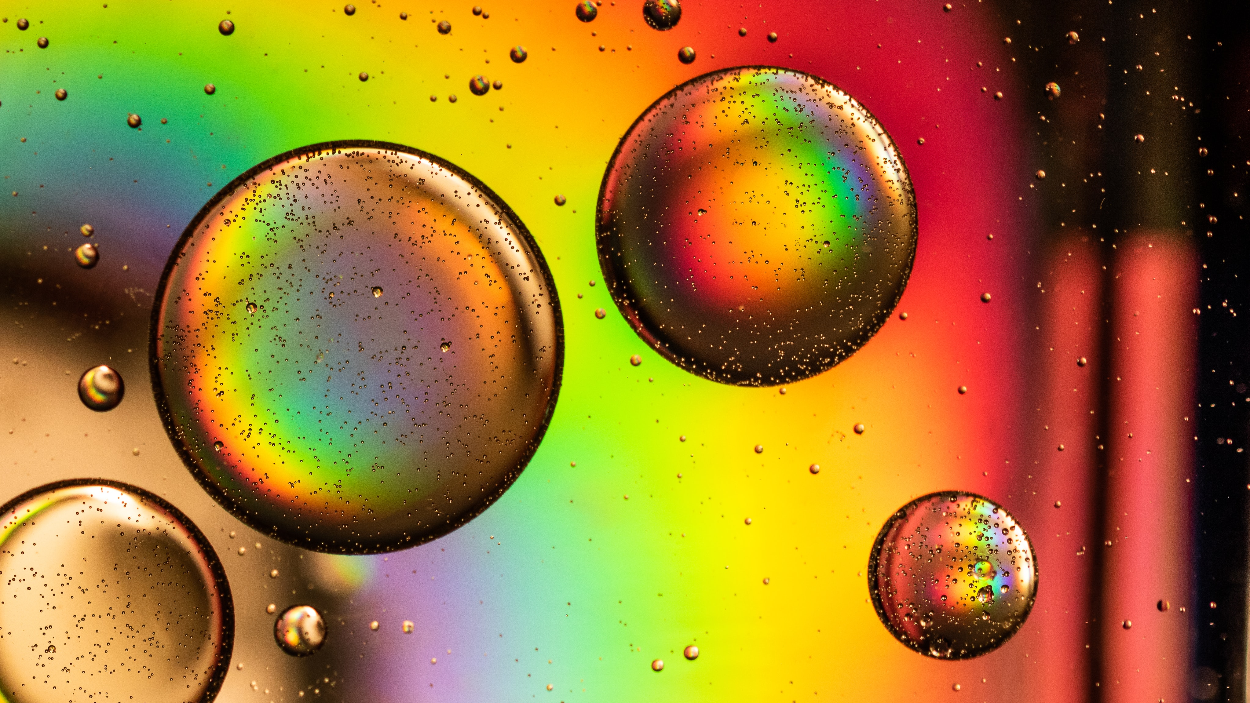 156213 download wallpaper Rainbow, Abstract, Circles, Multicolored, Motley, Bubble screensavers and pictures for free