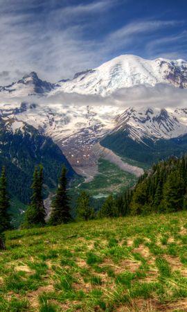 82761 скачать обои Природа, Mt Rainier, Вашингтон, Трава, Hdr, Горы, Пейзаж - заставки и картинки бесплатно