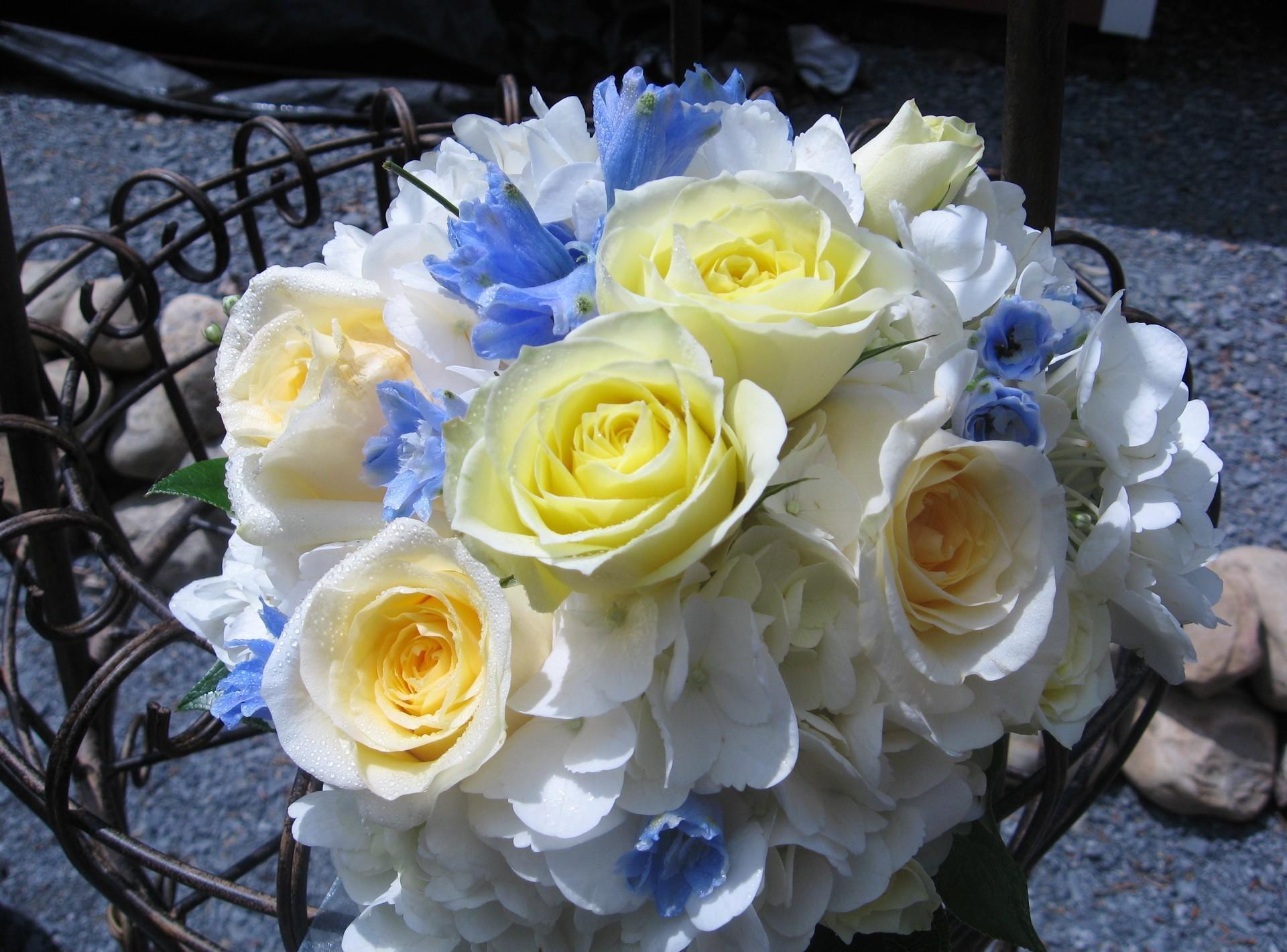 55164 скачать обои Цветы, Гортензия, Букет, Шикарно, Розы - заставки и картинки бесплатно