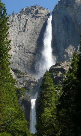 7074 скачать обои Пейзаж, Деревья, Водопады - заставки и картинки бесплатно
