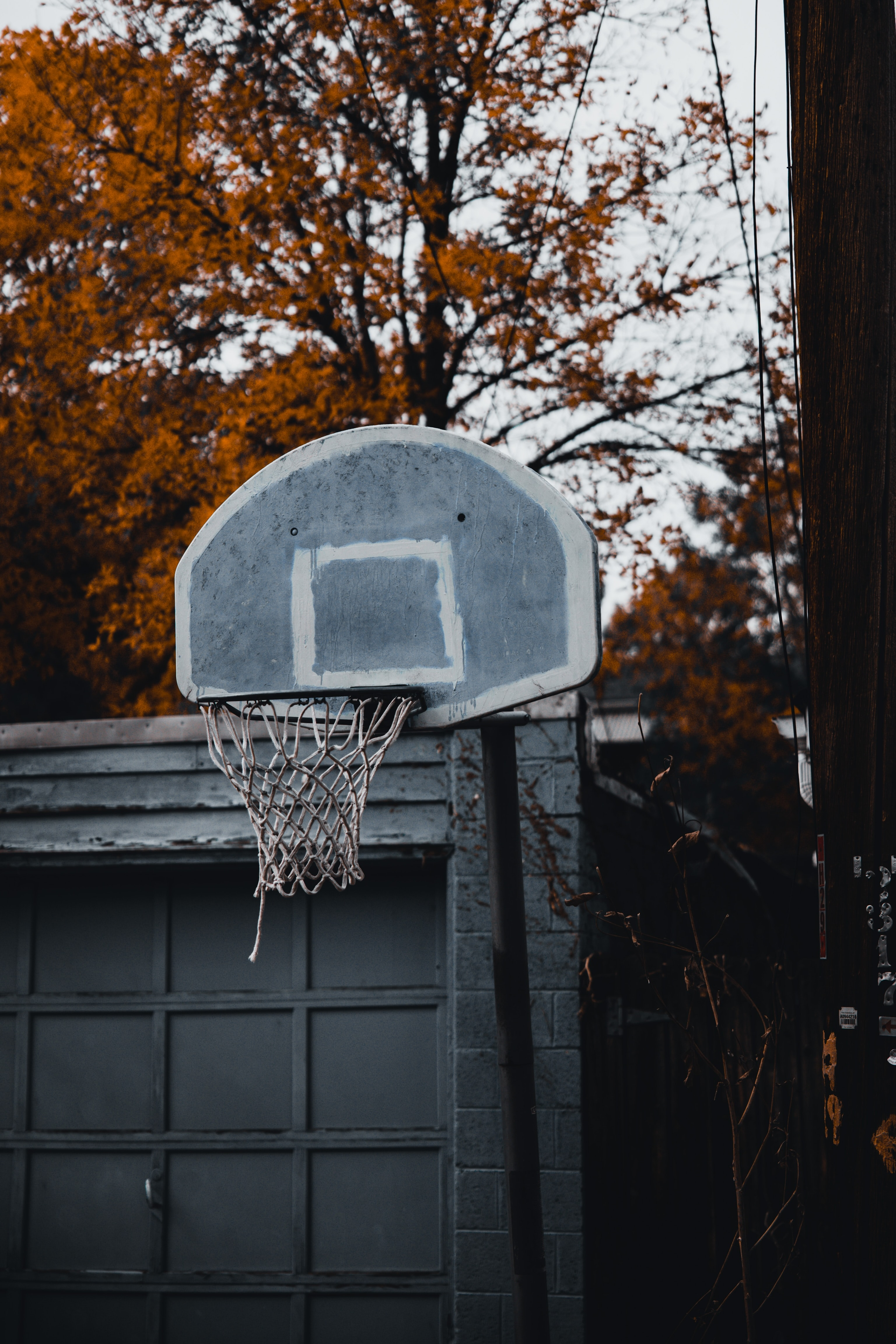 70095 Screensavers and Wallpapers Basketball for phone. Download Basketball Hoop, Basketball Ring, Basketball, Basket, Sports pictures for free