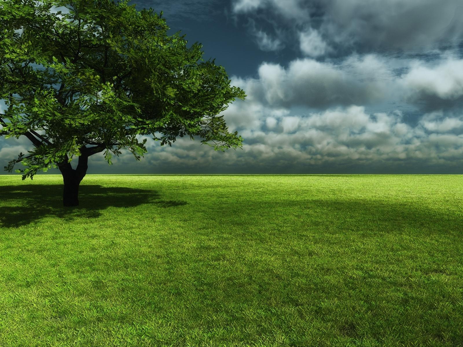 1529 скачать обои Пейзаж, Деревья, Трава, Небо - заставки и картинки бесплатно