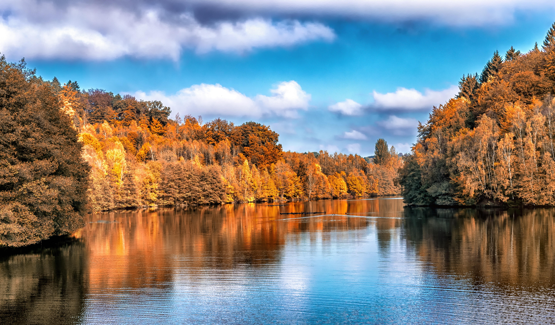 Скачати мобільні шпалери Осінь, Природа, Дерева, Озеро, Відображення безкоштовно.