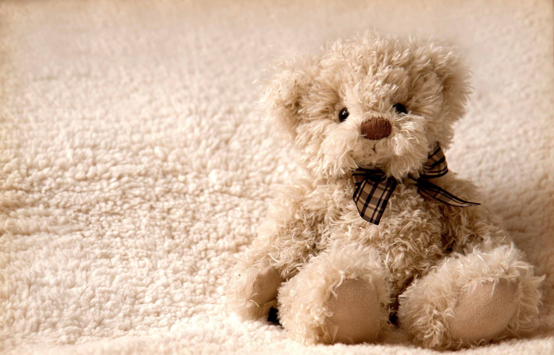 69928 Hintergrundbild herunterladen Spielzeug, Teddybär, Verschiedenes, Sonstige, Bär, Plüsch - Bildschirmschoner und Bilder kostenlos