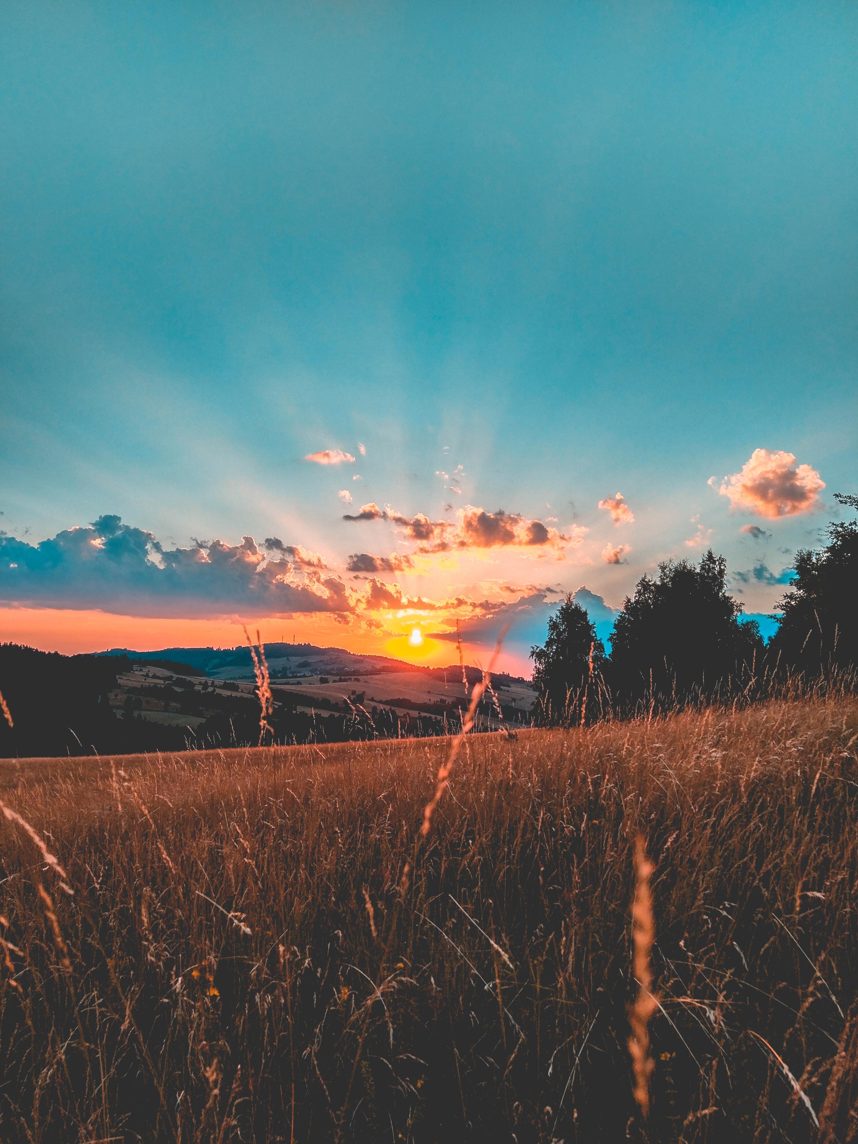 135554 Hintergrundbild herunterladen Feld, Natur, Sunset, Grass, Sky, Clouds - Bildschirmschoner und Bilder kostenlos