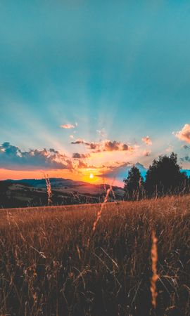 135554 скачать обои Природа, Поле, Закат, Трава, Небо, Облака - заставки и картинки бесплатно