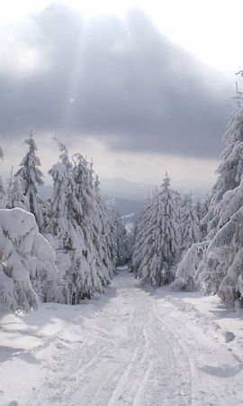 1742 download wallpaper Landscape, Winter, Trees, Roads, Snow screensavers and pictures for free