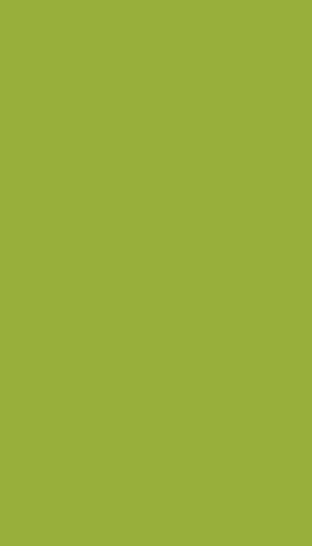 96347 обои 1080x2400 на телефон бесплатно, скачать картинки Однотонный, Фон, Текстуры, Минимализм, Зеленый, Цвет, Хаки 1080x2400 на мобильный