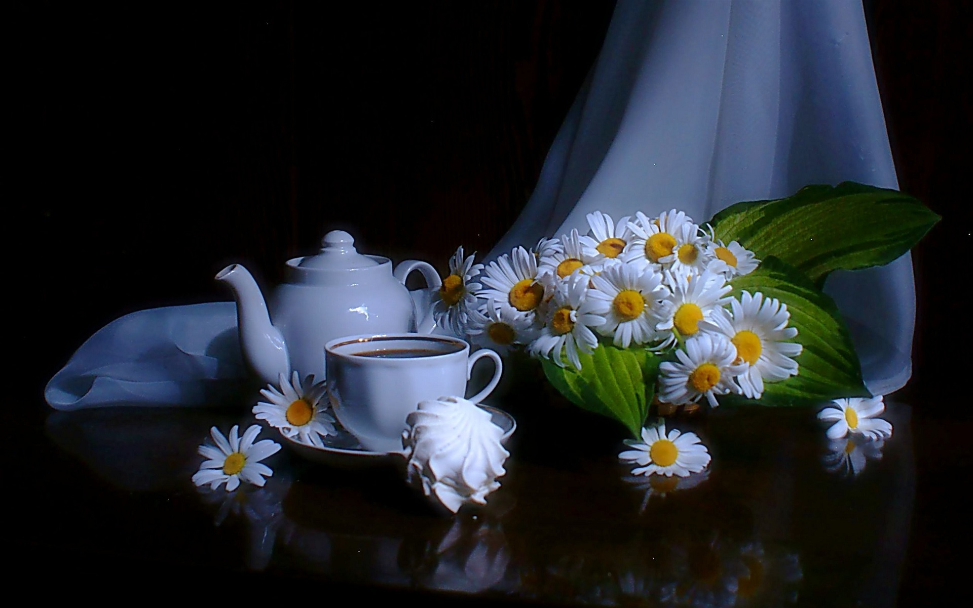 42259 download wallpaper Plants, Flowers, Objects, Camomile screensavers and pictures for free