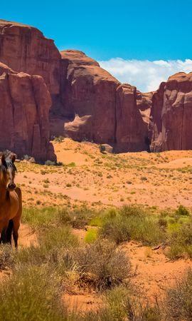 144957 Заставки и Обои Пустыня на телефон. Скачать Животные, Лошадь, Сша, Аризона, Долина Монументов, Дикий Запад, Пустыня картинки бесплатно