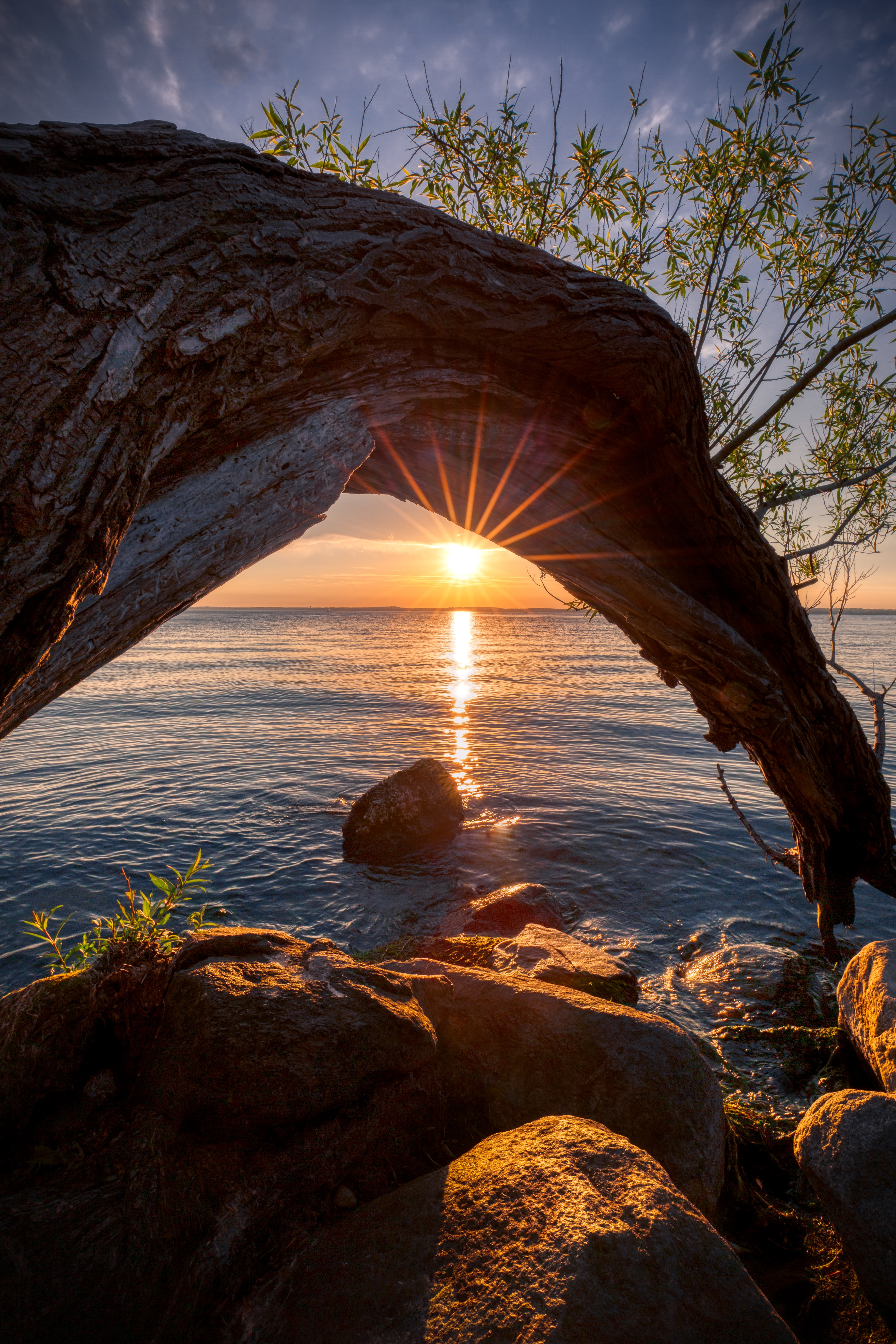 141955 download wallpaper Sunset, Nature, Sun, Lake, Wood, Beams, Rays, Tree screensavers and pictures for free