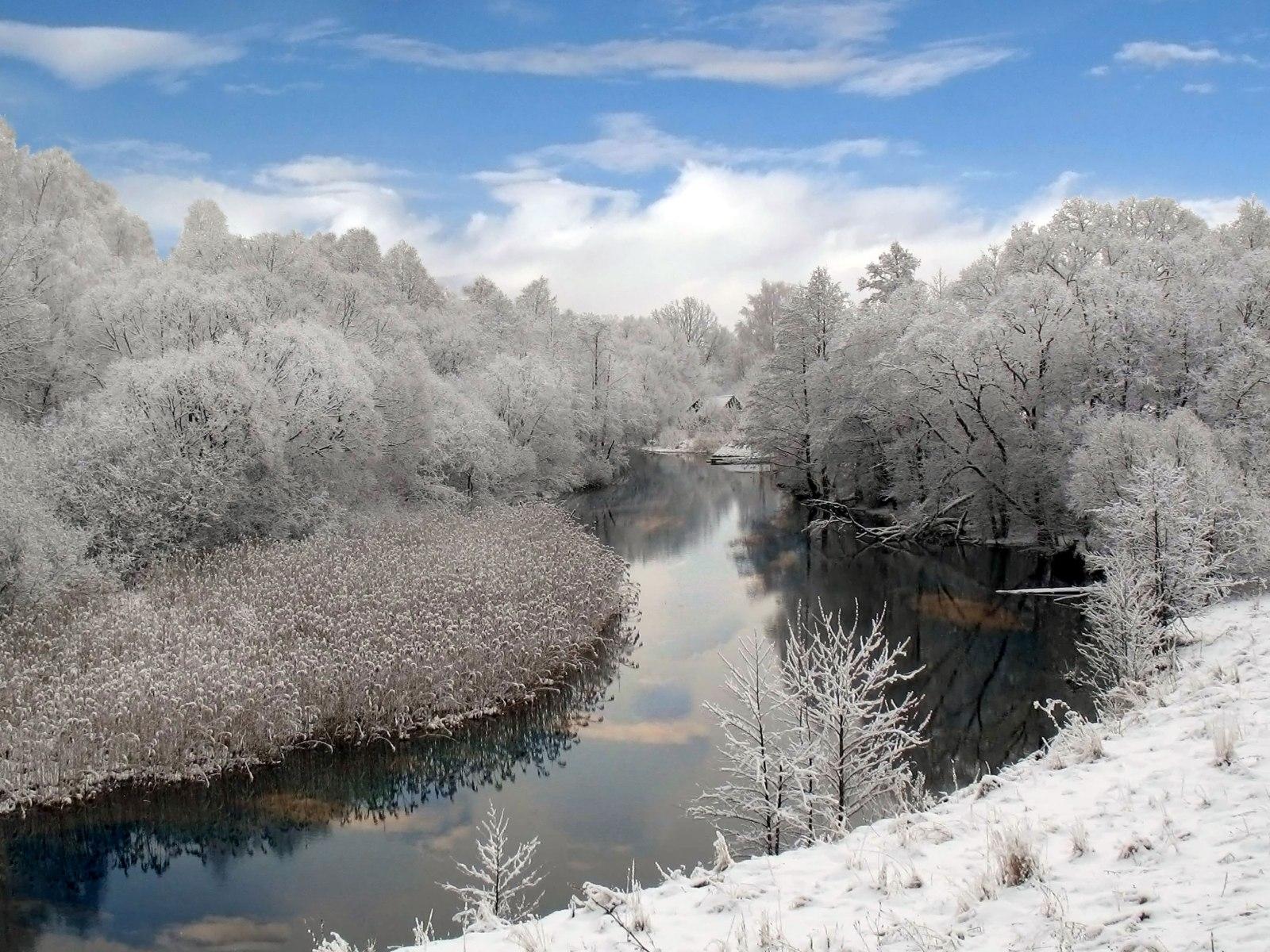 3223 скачать обои Пейзаж, Зима, Река, Деревья - заставки и картинки бесплатно