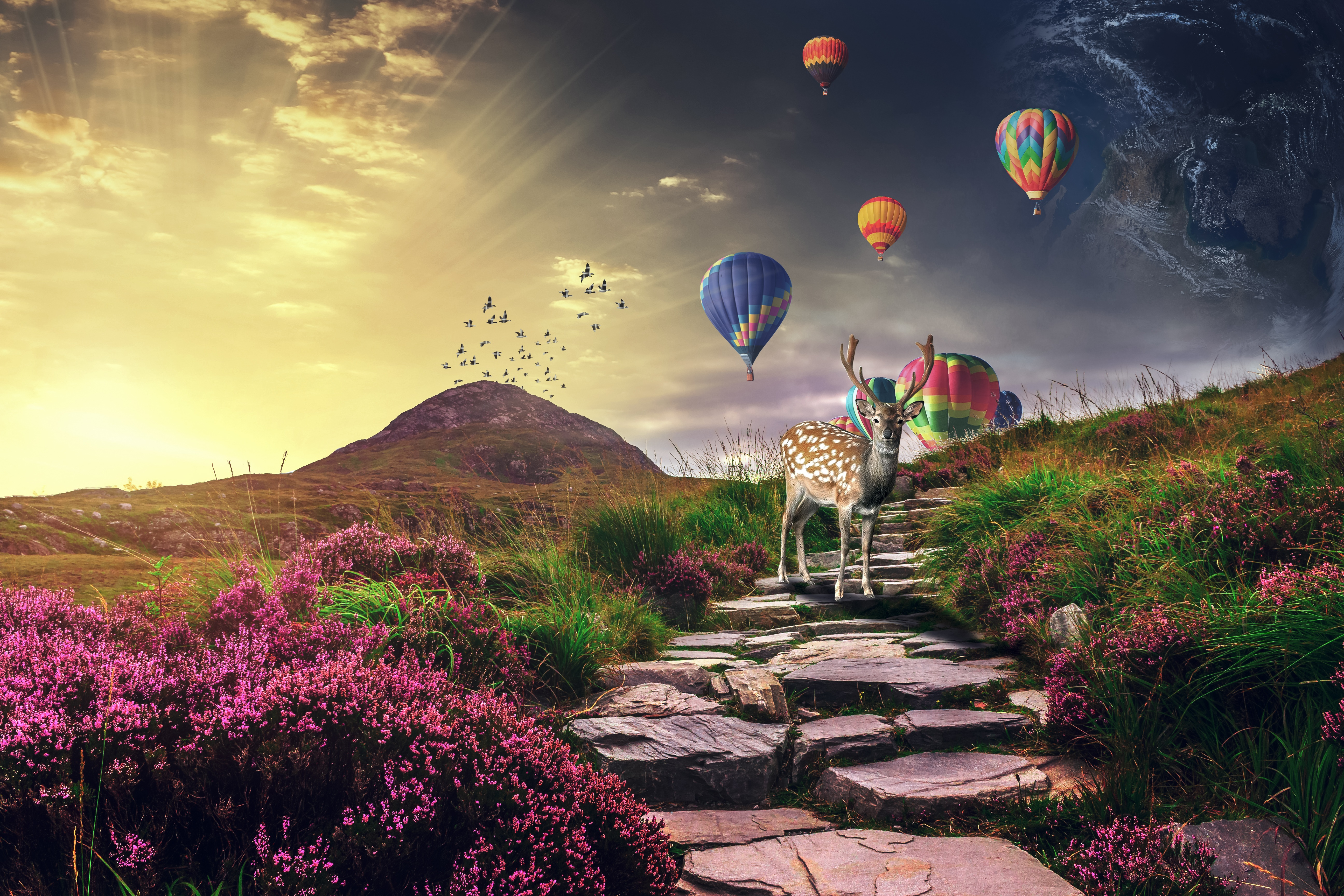 157618 Screensavers and Wallpapers Balloons for phone. Download Animals, Balloons, Photoshop, Deer pictures for free