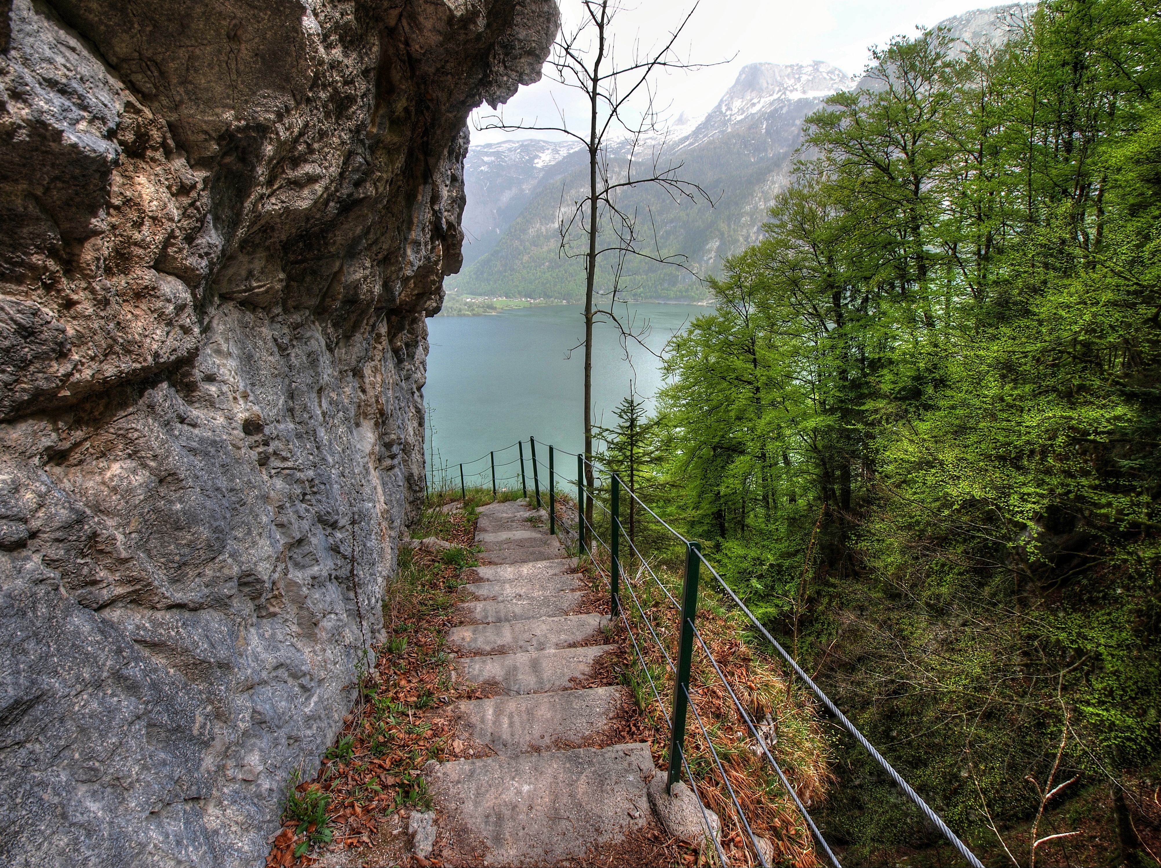 75842 download wallpaper Nature, Rock, Lake, Steps, Trees, Descent, Landscape screensavers and pictures for free