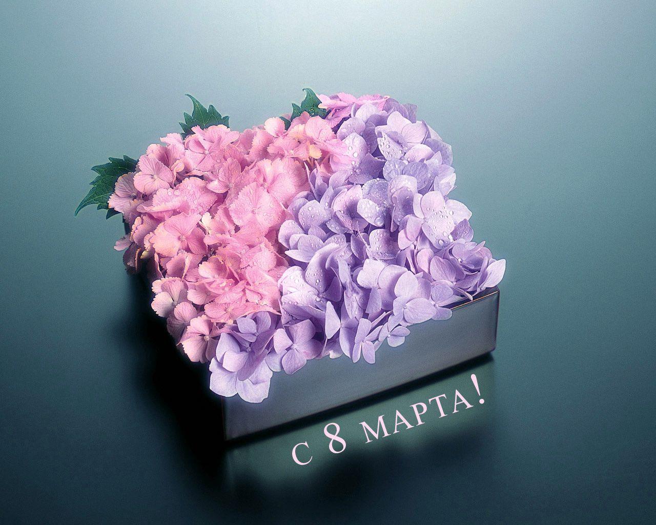 99797 скачать обои Цветы, Коробка, Поздравления, Праздник, Листья, Капли - заставки и картинки бесплатно