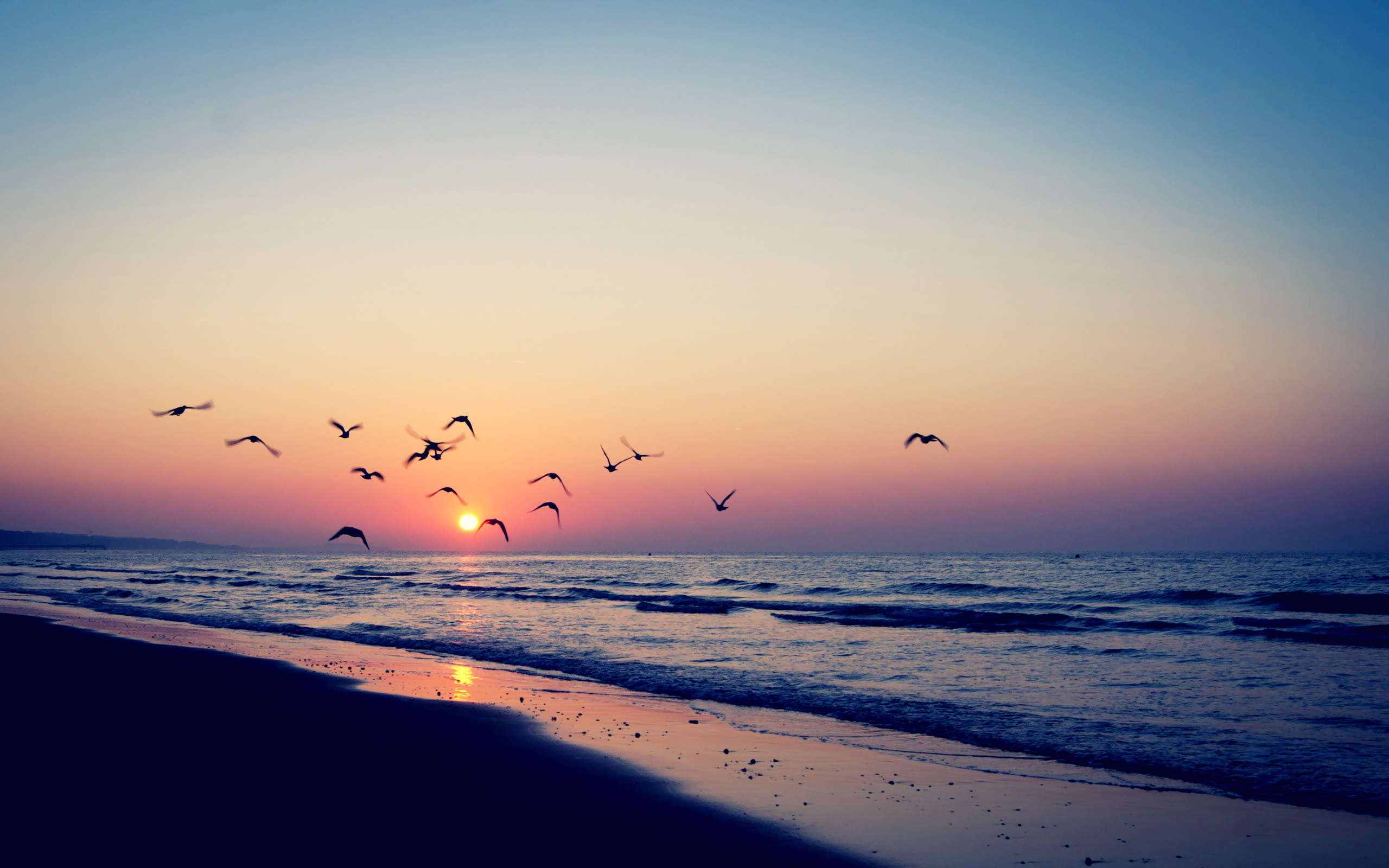 27022 download wallpaper Landscape, Sunset, Sea, Seagulls, Waves screensavers and pictures for free