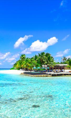 116787壁紙のダウンロード自然, 海洋, 大洋, ビーチ, リラクゼーション, 休む, パラダイス, パームス-スクリーンセーバーと写真を無料で
