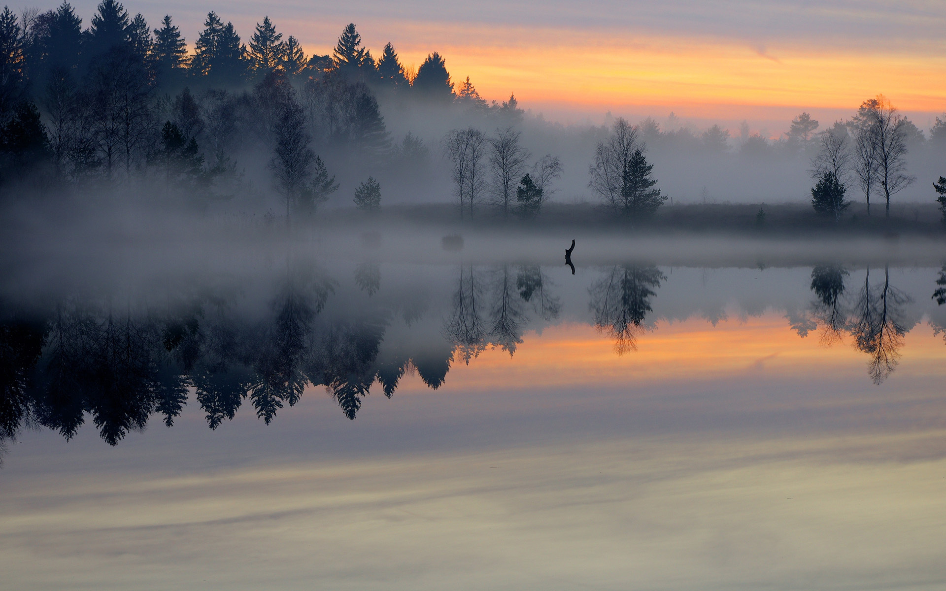 24562 скачать обои Пейзаж, Река, Деревья, Закат - заставки и картинки бесплатно