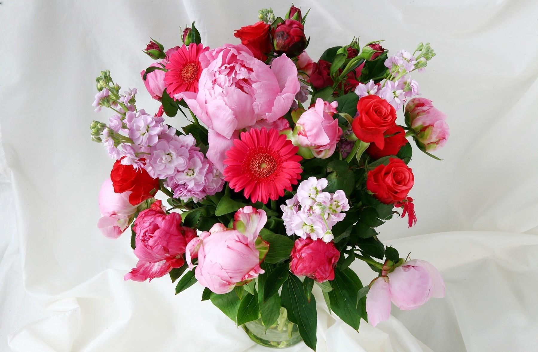 52002 скачать обои Пионы, Цветы, Розы, Герберы, Зелень, Букет, Ваза, Левкой, Маттиола - заставки и картинки бесплатно
