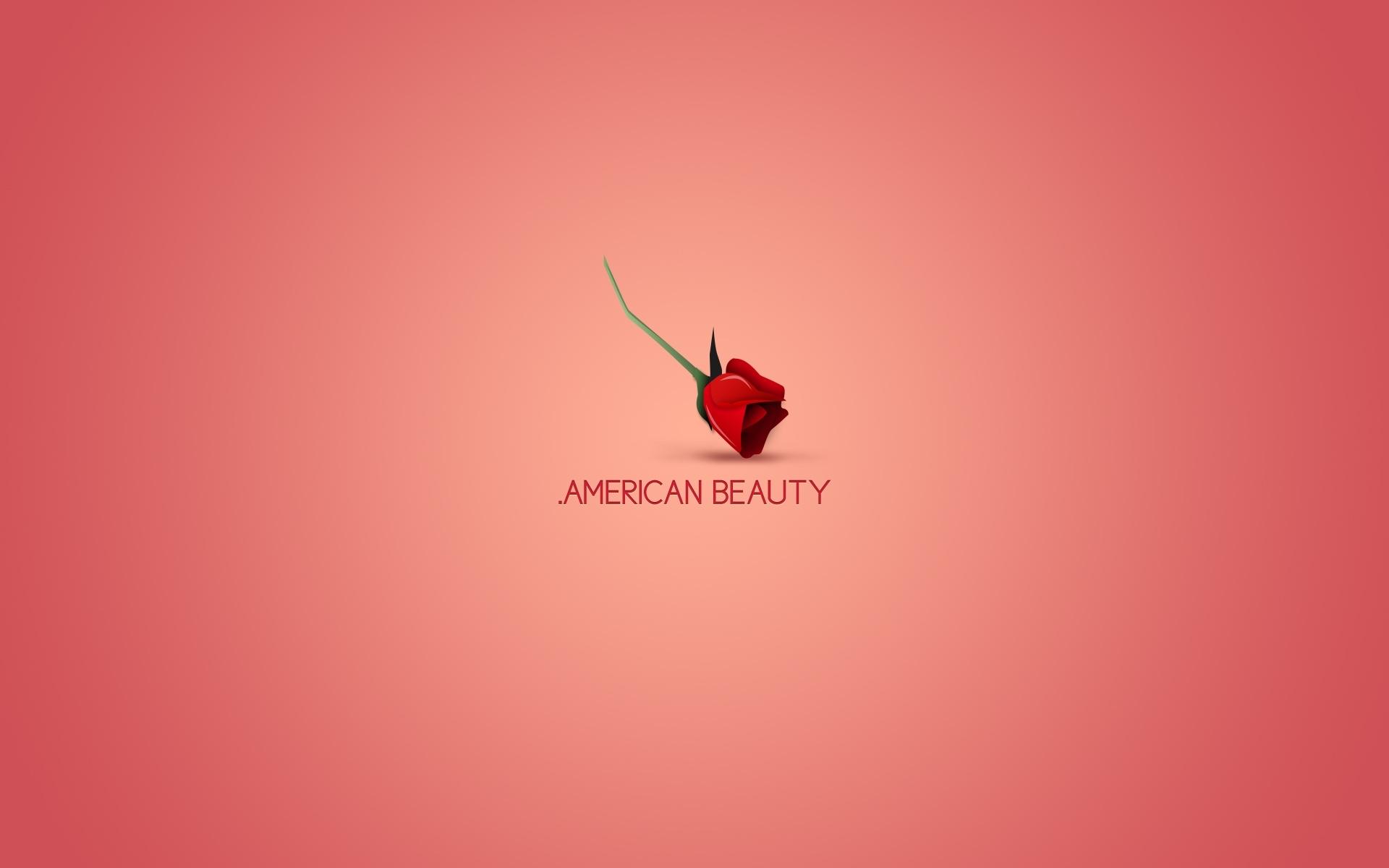 24915 télécharger le fond d'écran Fleurs, Contexte, Roses - économiseurs d'écran et images gratuitement