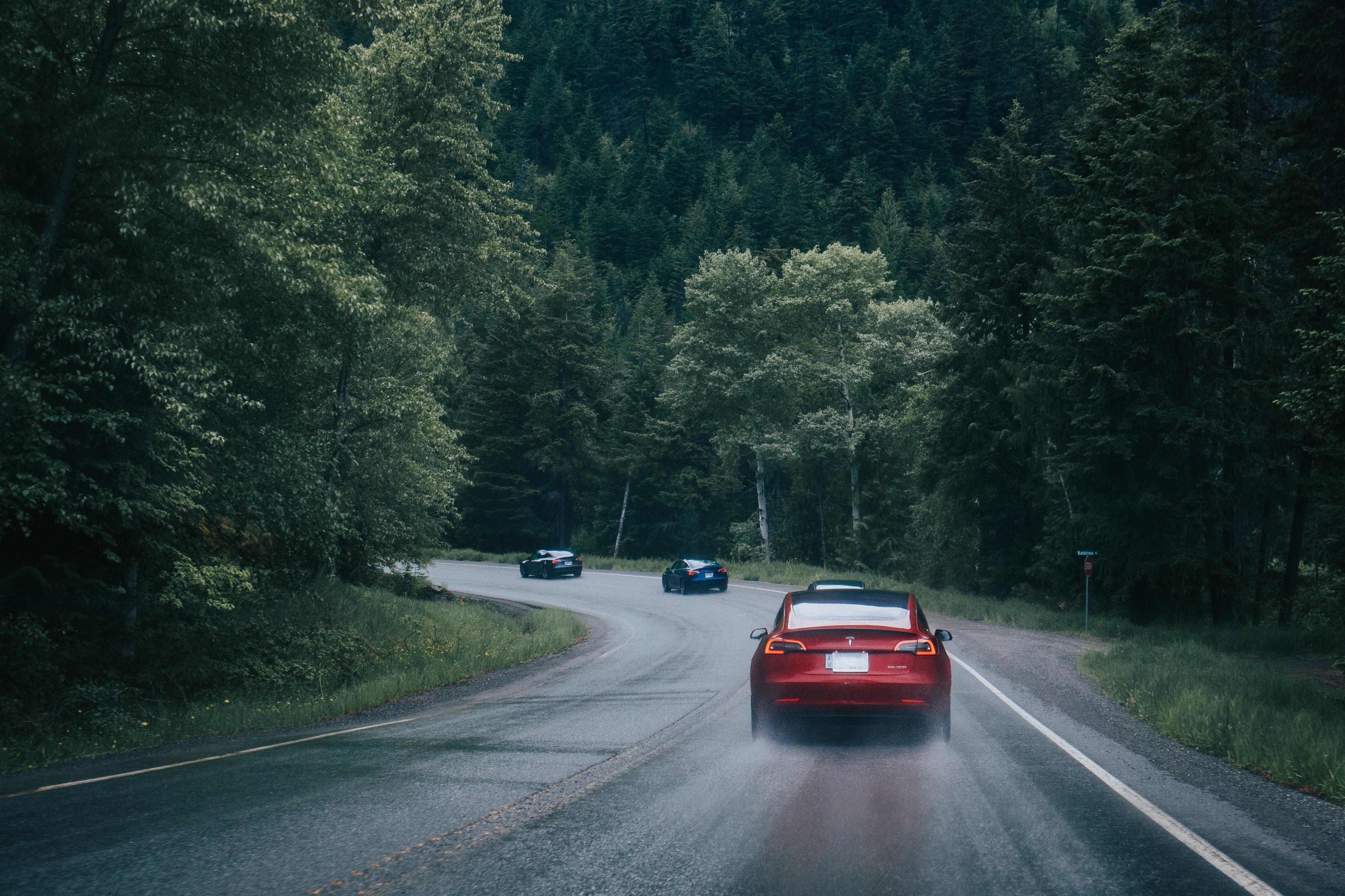 81727 скачать обои Тачки (Cars), Погоня, Дорога, Лес, Машины - заставки и картинки бесплатно