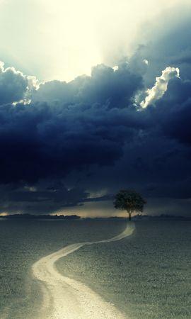 31267 скачать обои Пейзаж, Деревья, Поля, Облака - заставки и картинки бесплатно