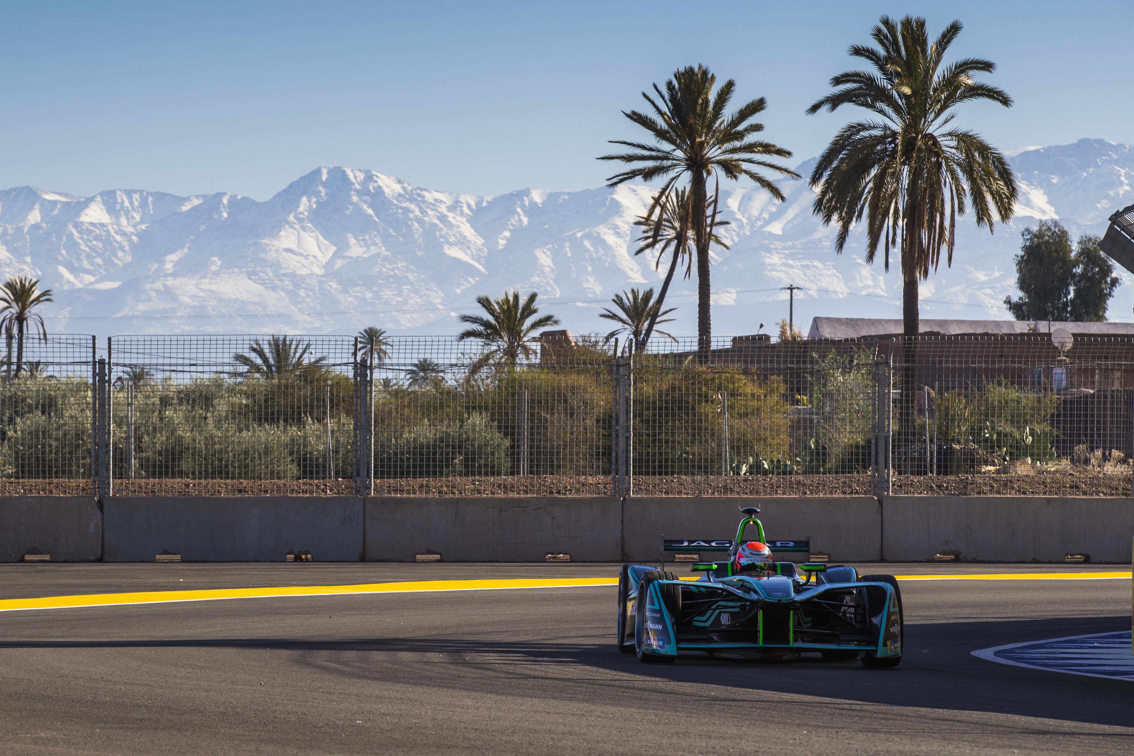 153608 Screensavers and Wallpapers Races for phone. Download Sports, Trees, Races, Palms, Asphalt, Fence, Track, Racer, Route, Formula 1, Formula One, Bolide pictures for free