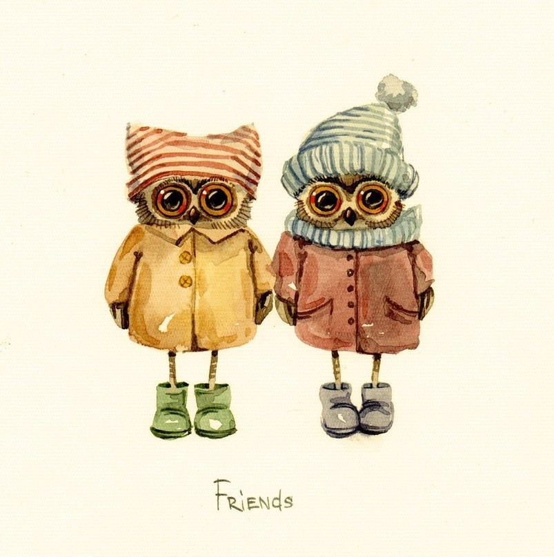 16925 download wallpaper Animals, Birds, Owl, Friendship, Pictures screensavers and pictures for free