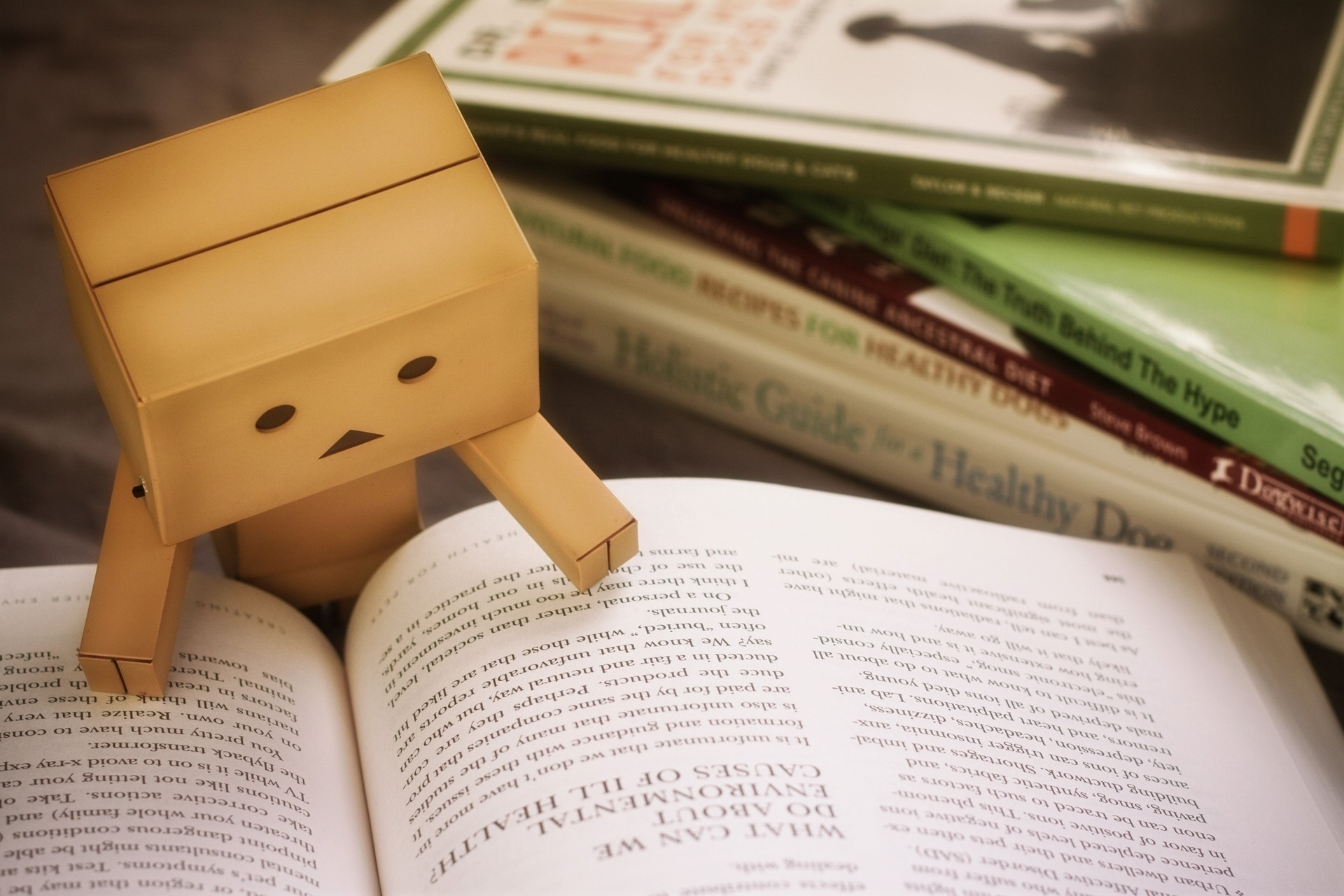 56517 Screensavers and Wallpapers Book for phone. Download Miscellanea, Miscellaneous, Book, Danbo, Cardboard Robot, Reading pictures for free