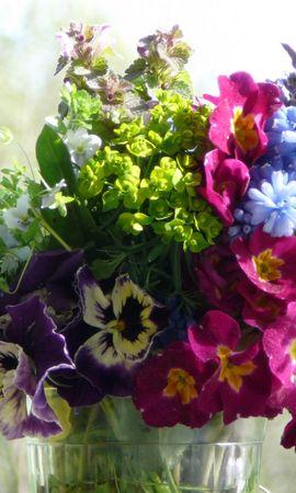 25537 скачать обои Растения, Цветы, Букеты - заставки и картинки бесплатно
