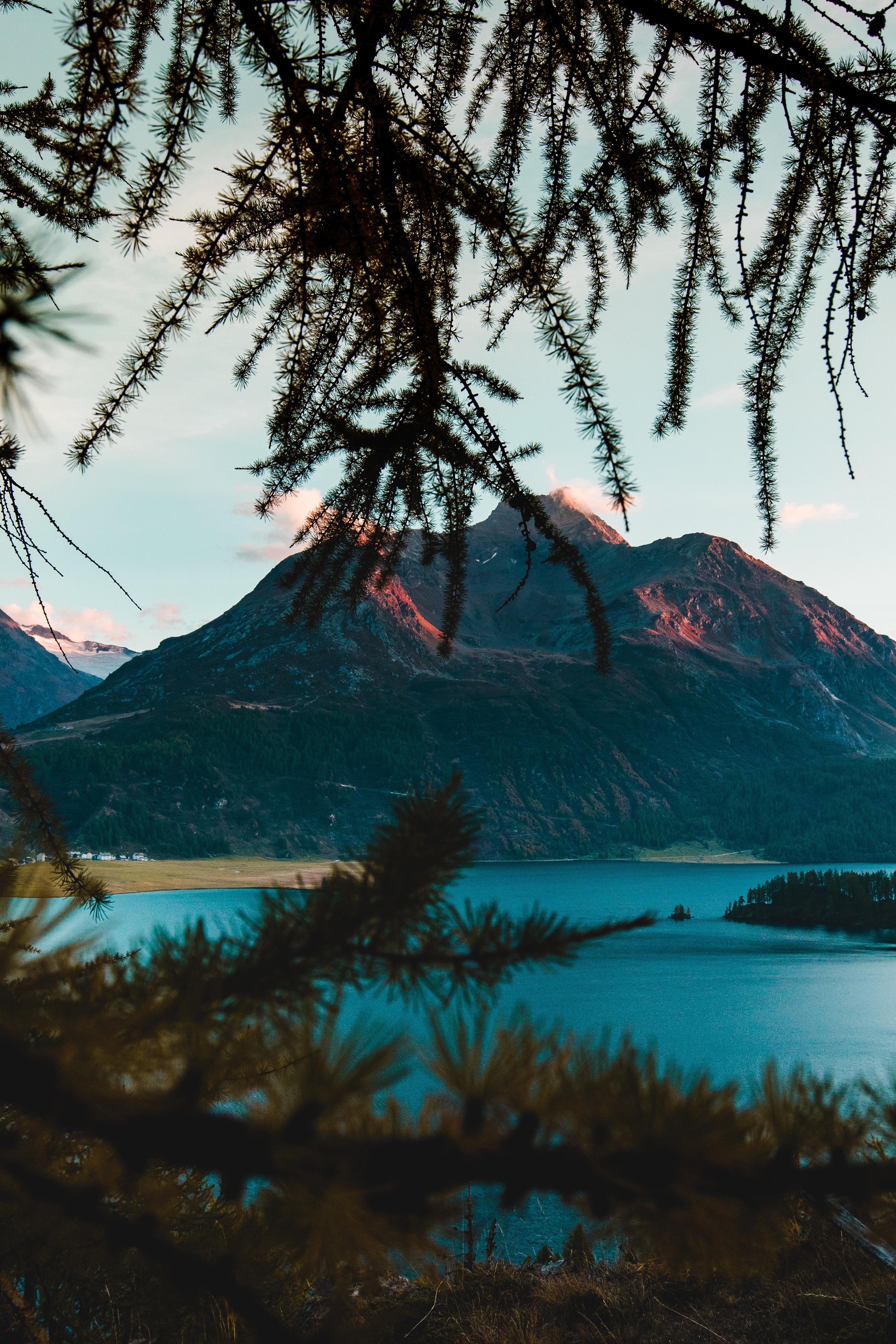137915 скачать обои Природа, Горы, Озеро, Ветки, Швейцария - заставки и картинки бесплатно