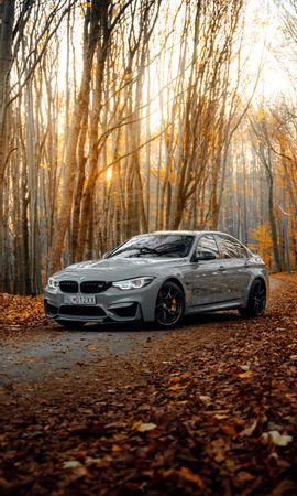 122065 скачать обои Тачки (Cars), Bmw M3, Бмв (Bmw), Автомобиль, Серый, Вид Сбоку, Лес, Осень - заставки и картинки бесплатно