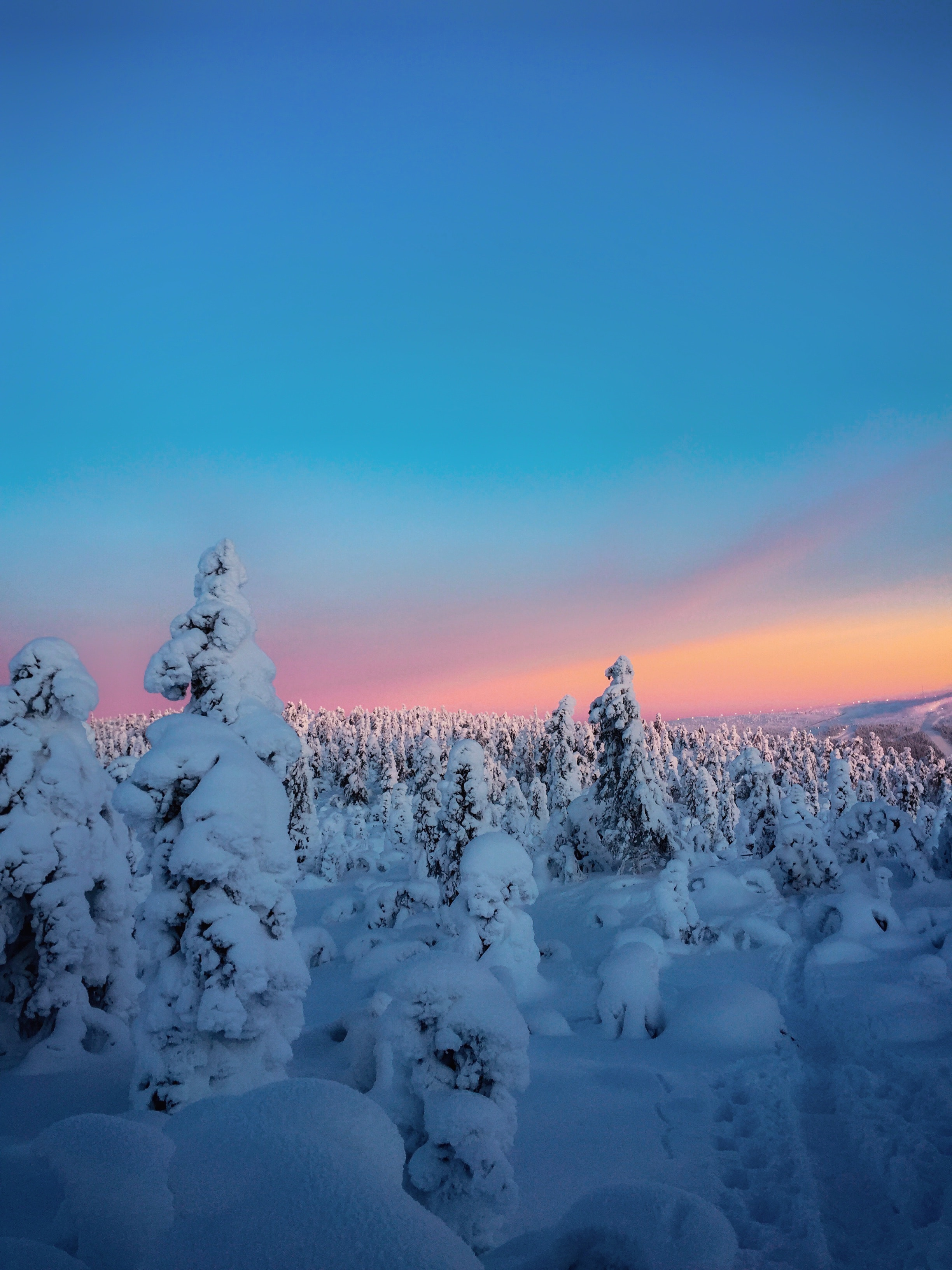 115905 download wallpaper Nature, Winter, Trees, Snow, Horizon, Snow Covered, Snowbound screensavers and pictures for free