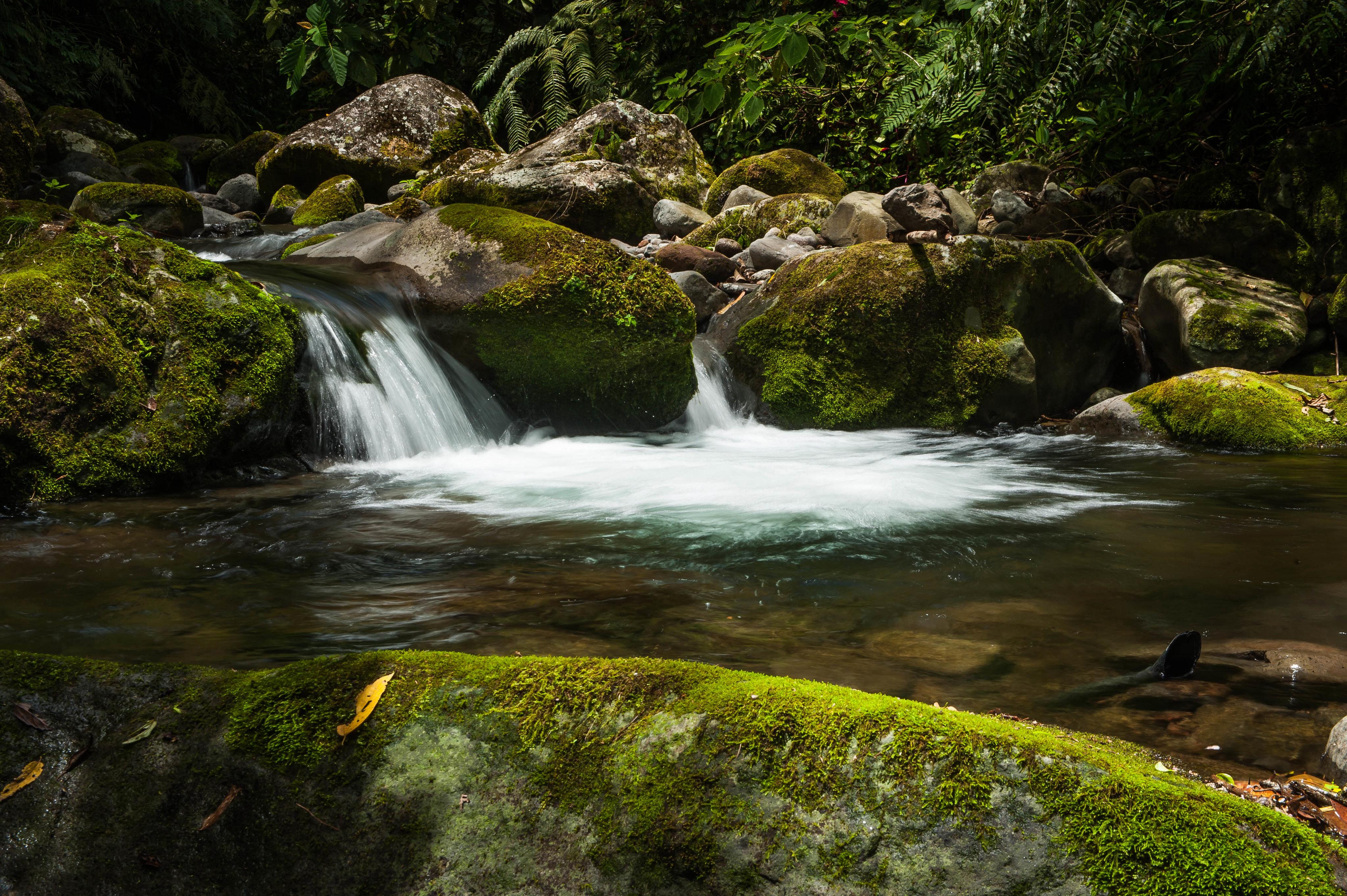 157096 Bildschirmschoner und Hintergrundbilder Pflanzen auf Ihrem Telefon. Laden Sie Pflanzen, Natur, Wasser, Stones, Wasserfall, Moos, Moss Bilder kostenlos herunter