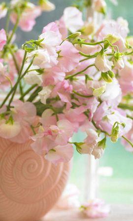 39015 скачать обои Растения, Цветы, Букеты - заставки и картинки бесплатно