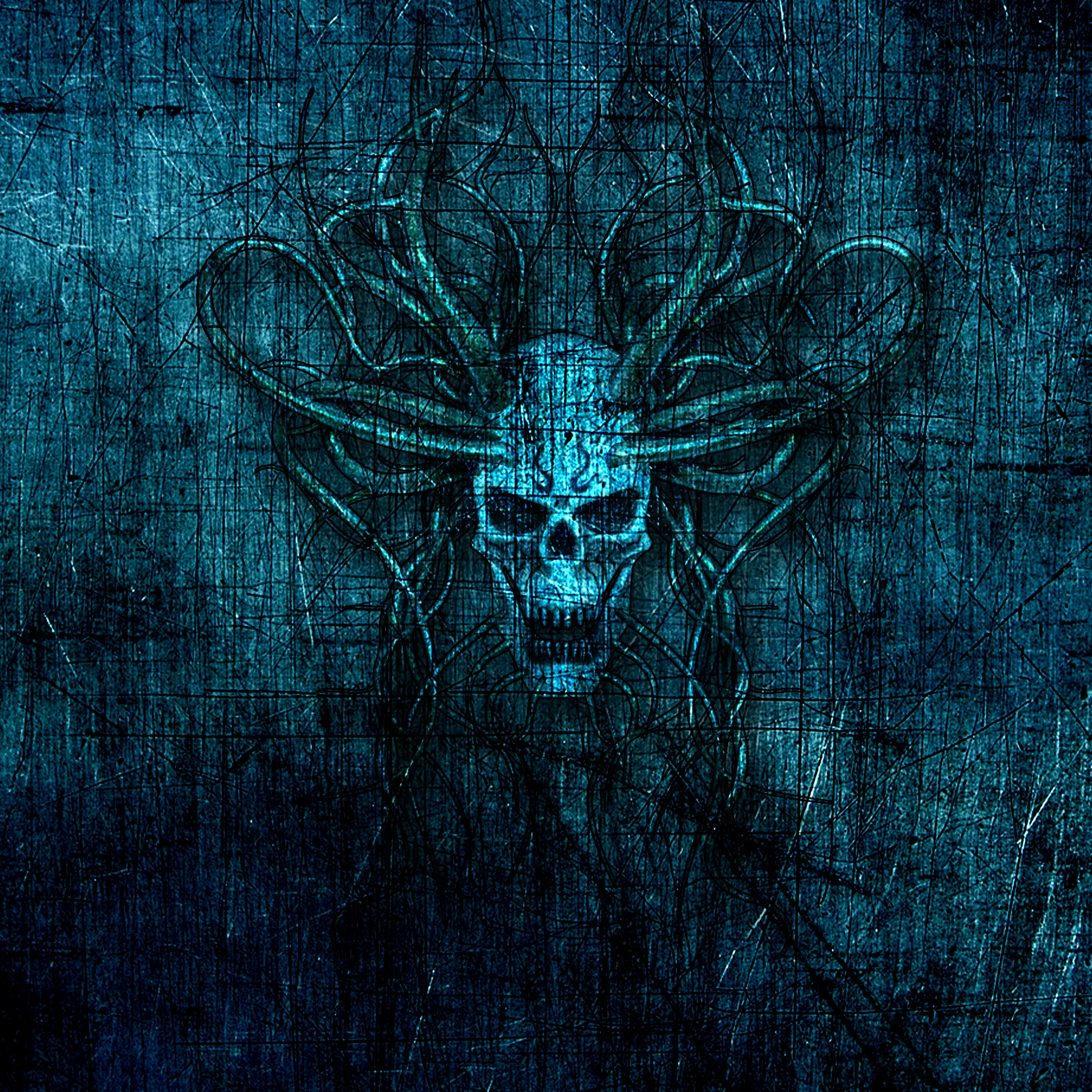 141251 download wallpaper Skull, Horns, Scratches, Art screensavers and pictures for free