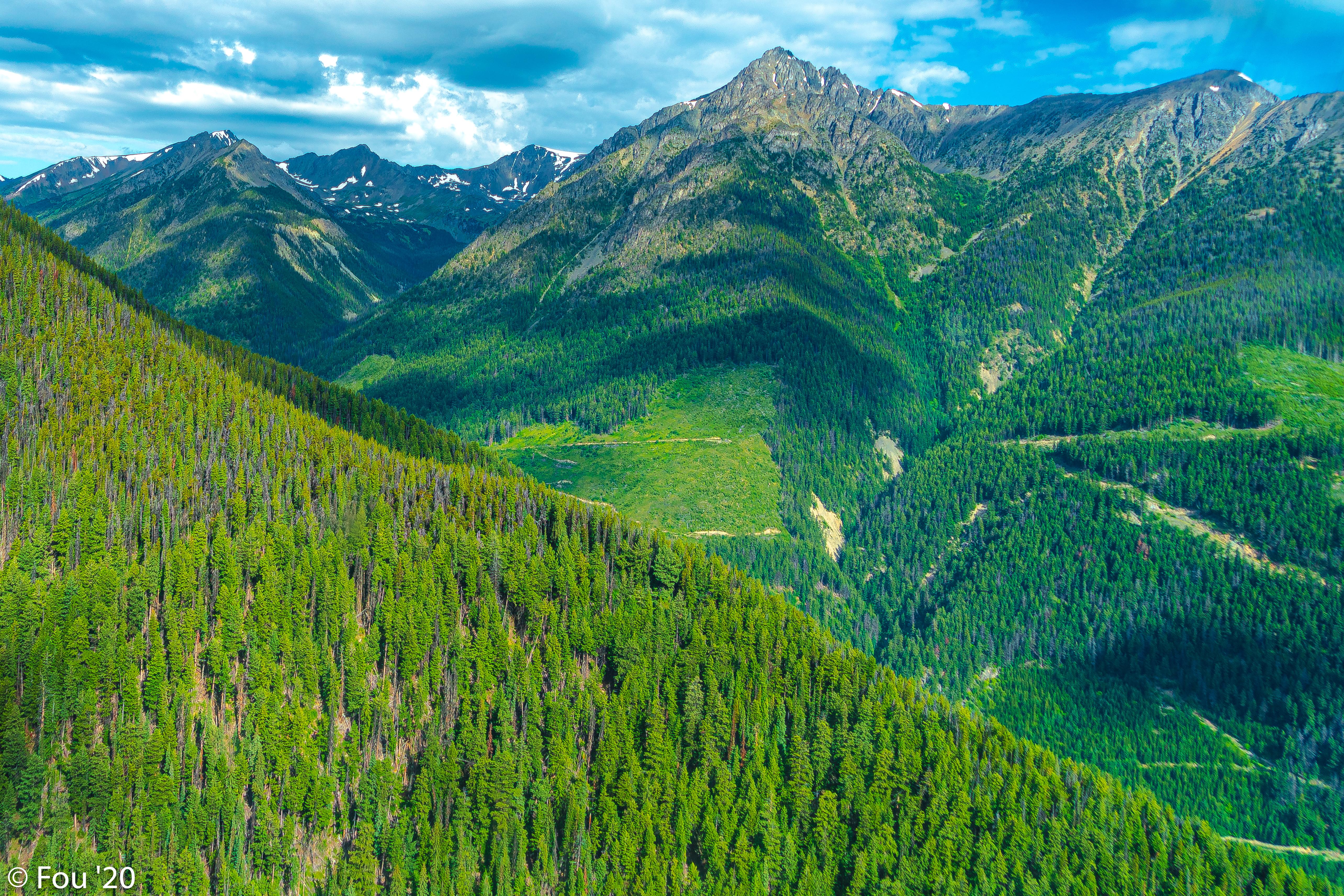 134643 descarga Verde fondos de pantalla para tu teléfono gratis, Naturaleza, Bosque, Pendiente, Cuesta, Montañas, Paisaje Verde imágenes y protectores de pantalla para tu teléfono