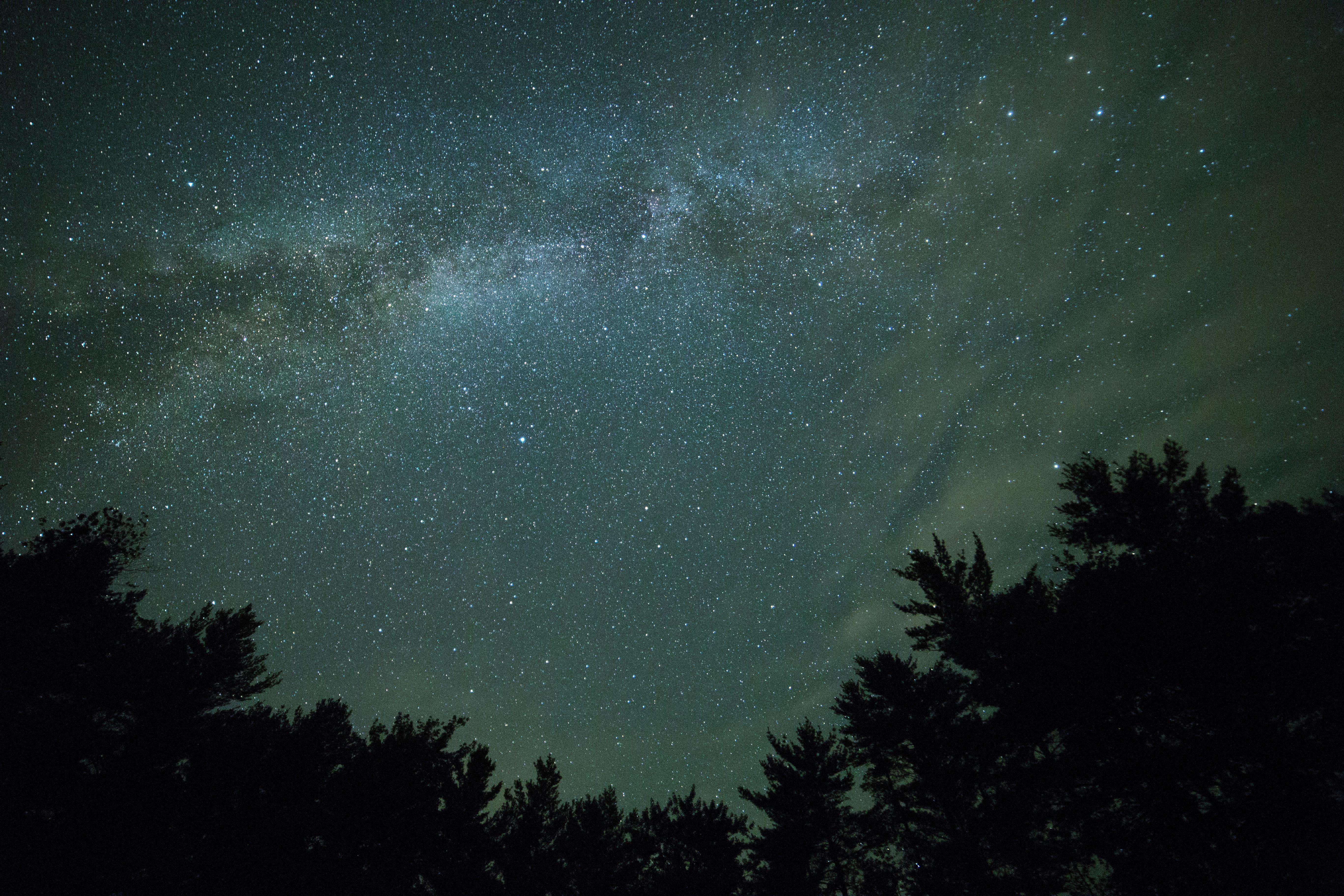 154389壁紙のダウンロード自然, 星空, ナイト, 木, 闇, 暗い, 天の川-スクリーンセーバーと写真を無料で