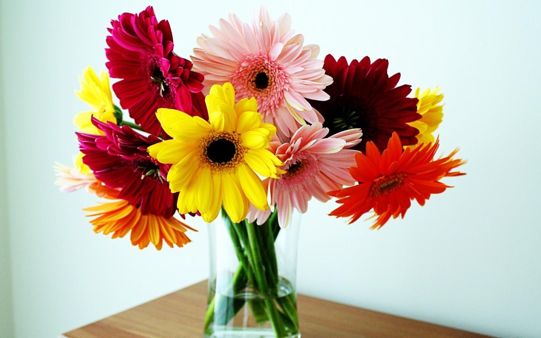 22926 скачать обои Букеты, Растения, Праздники, Цветы - заставки и картинки бесплатно