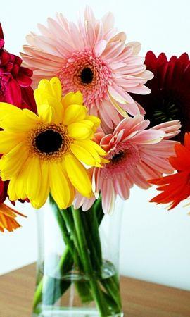 22926 скачать обои Праздники, Растения, Цветы, Букеты - заставки и картинки бесплатно