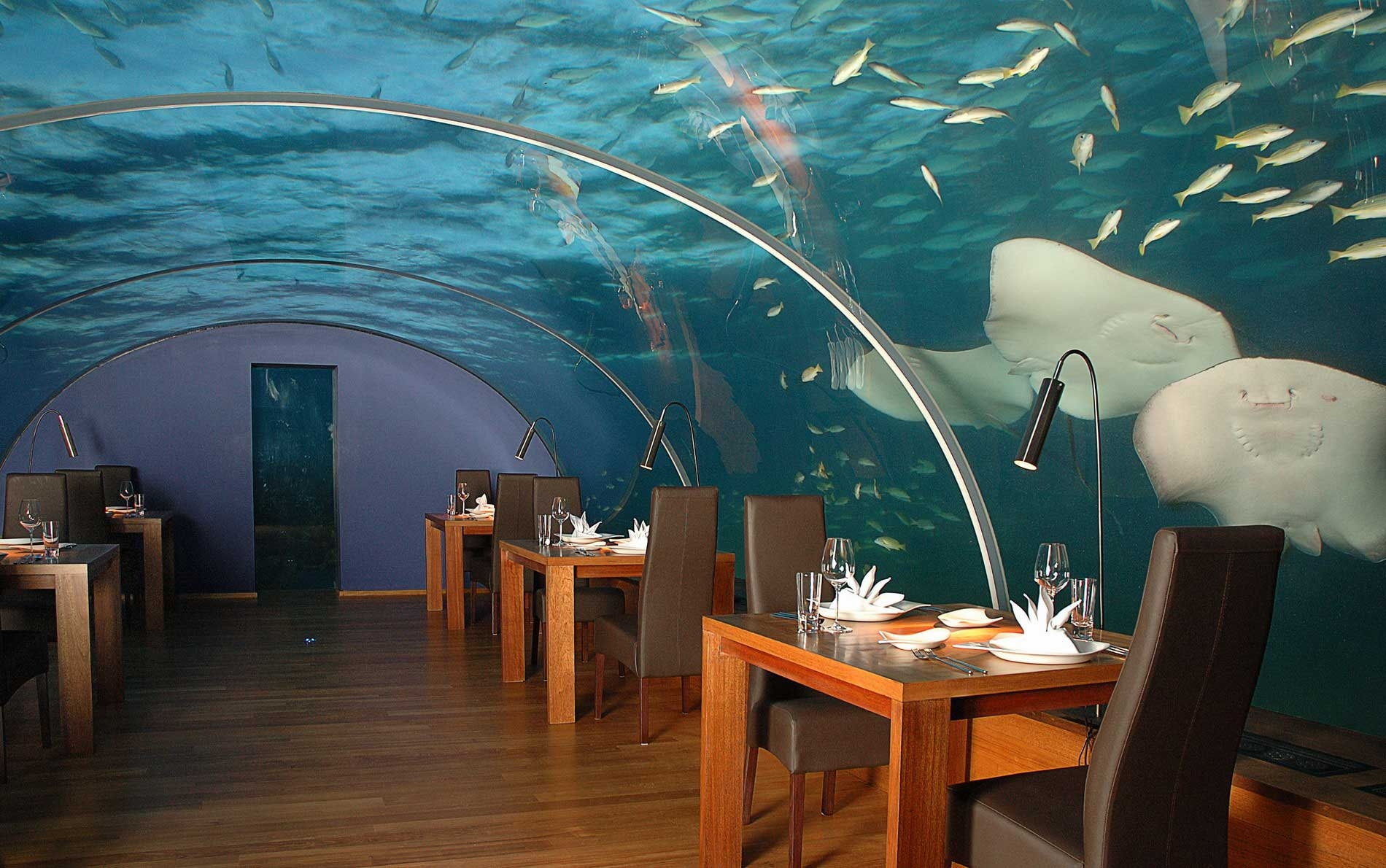 69684 Hintergrundbild herunterladen Verschiedenes, Sonstige, Tropen, Malediven, Unterwasserrestaurant - Bildschirmschoner und Bilder kostenlos
