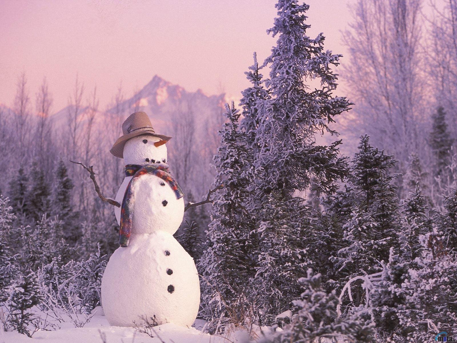 4585 скачать обои Пейзаж, Зима, Деревья - заставки и картинки бесплатно