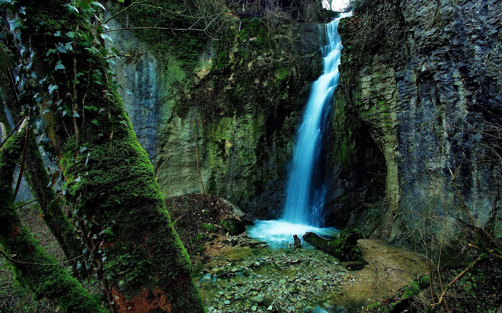 143332 download wallpaper Nature, Waterfall, Gorge, Rocks, Moss, Growths, Wood, Tree, Stones screensavers and pictures for free