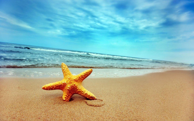 18473 скачать обои Пейзаж, Небо, Море, Пляж, Морские Звезды - заставки и картинки бесплатно
