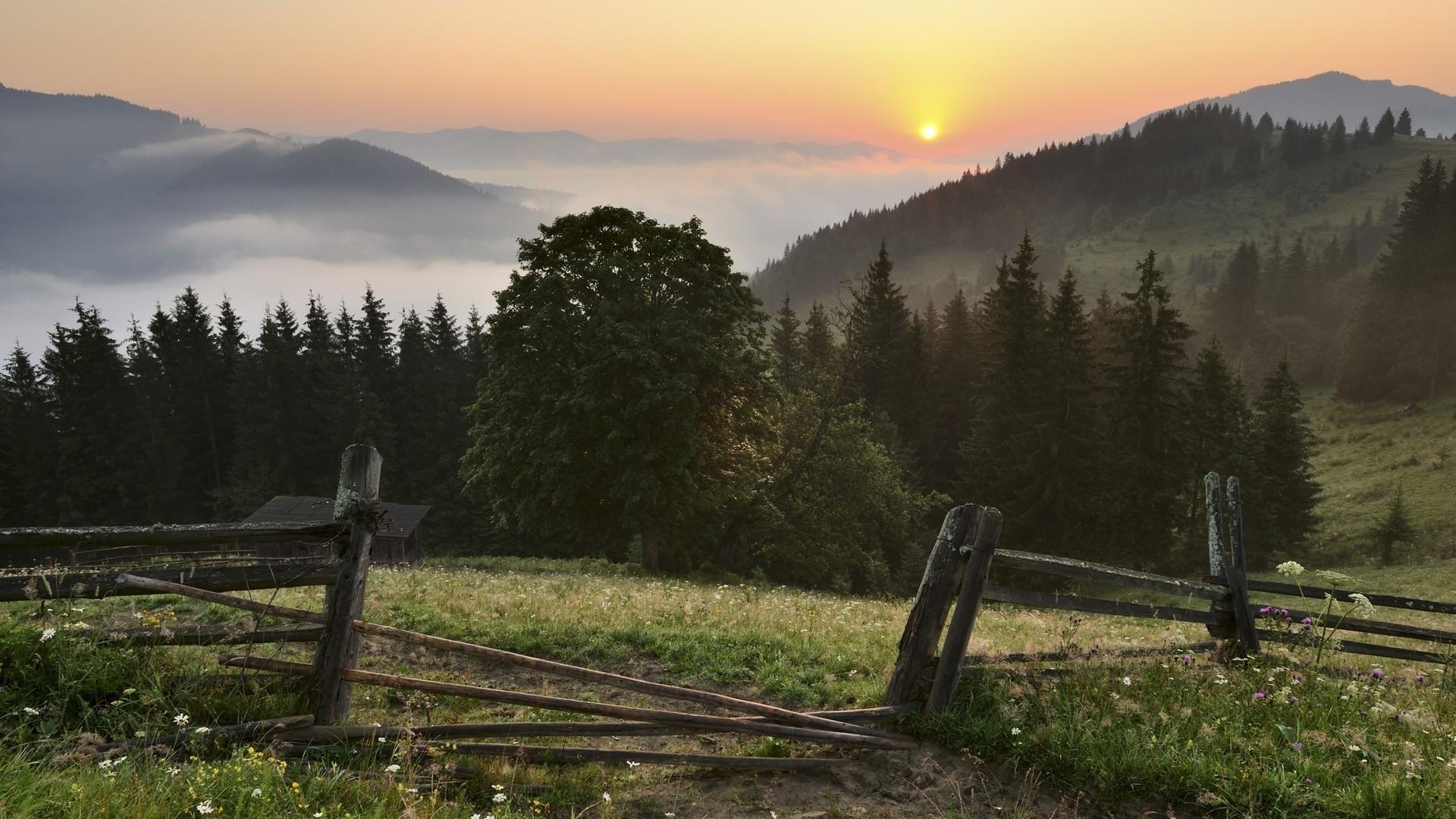 28534 скачать обои Пейзаж, Деревья, Горы - заставки и картинки бесплатно