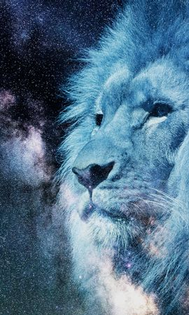 114409 download wallpaper Art, Lion, Muzzle, Starry Sky, Photoshop, King Of Beasts, King Of The Beasts, Predator, Stars screensavers and pictures for free
