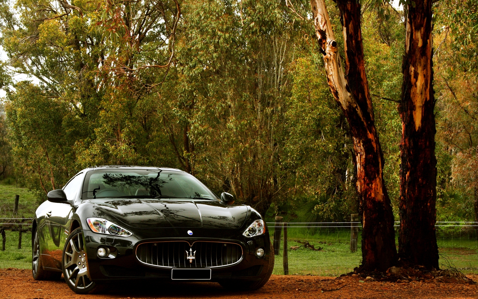 44771 download wallpaper Transport, Auto, Maserati screensavers and pictures for free