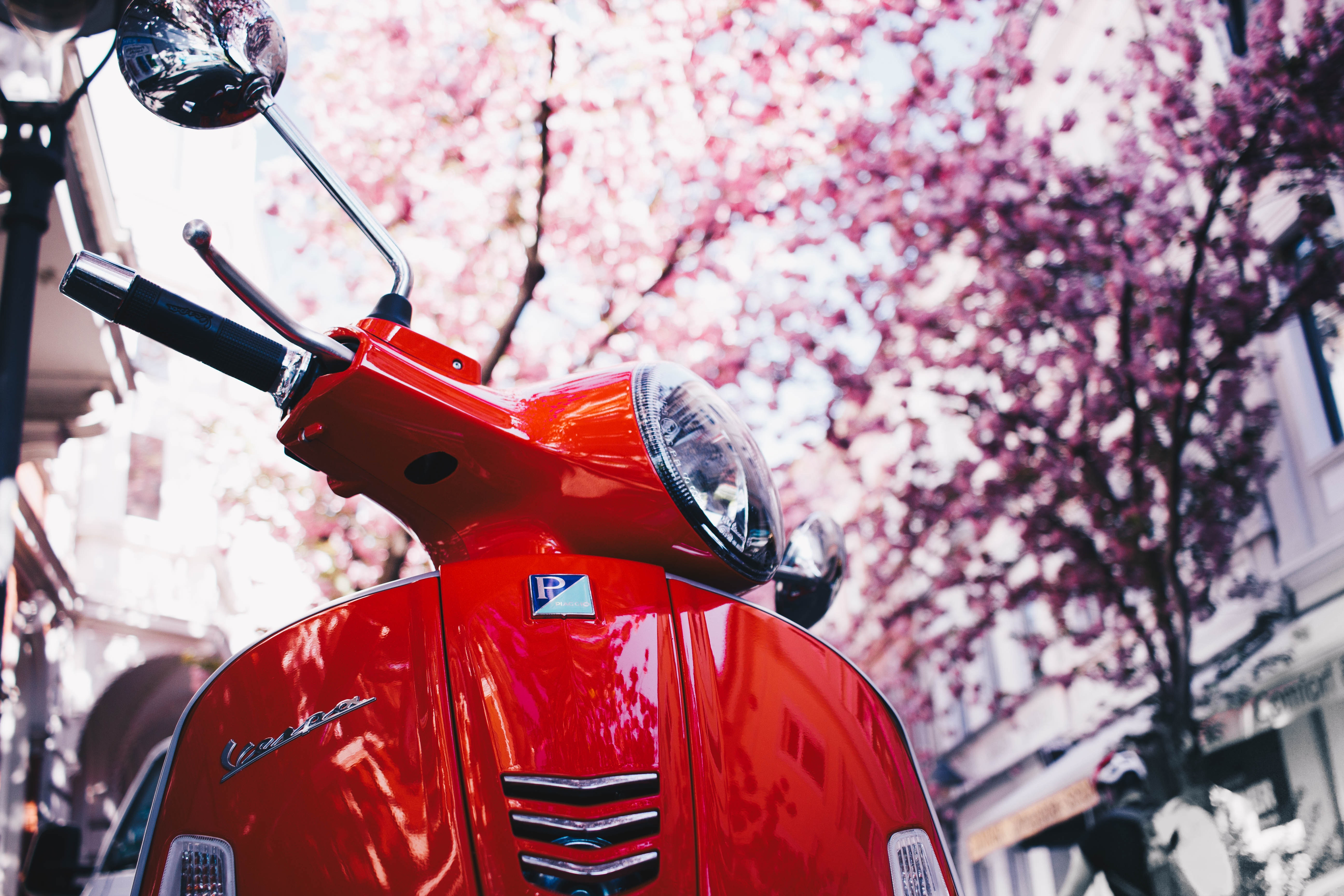 126104 Screensavers and Wallpapers Sakura for phone. Download Motorcycles, Sakura, Scooter, Vespa pictures for free