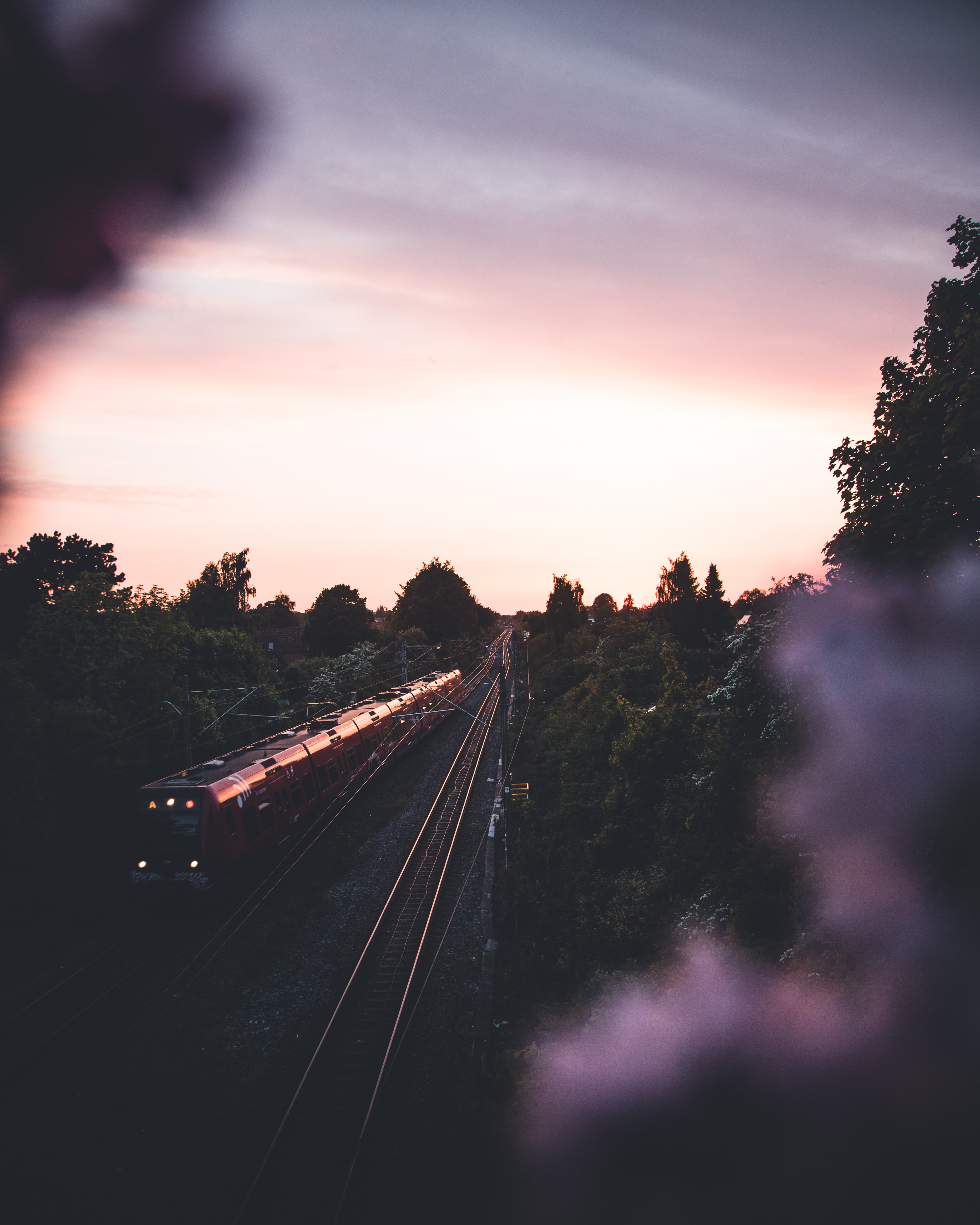 123614 Screensavers and Wallpapers Train for phone. Download Trees, Twilight, Dark, Miscellanea, Miscellaneous, Dusk, Railway, Rails, Train pictures for free
